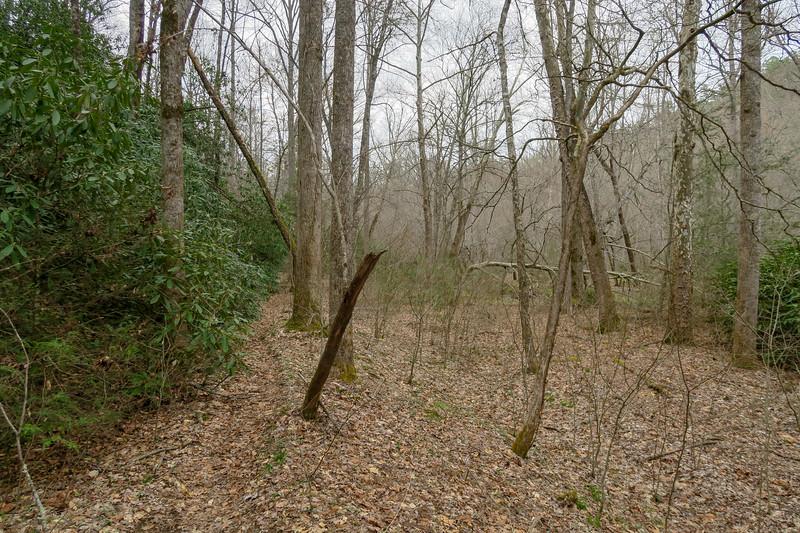Riverside Trail -- 2,300'