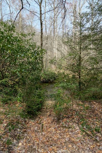 Riverside Trail -- 2,290'