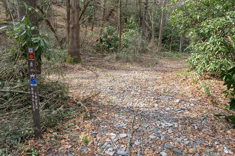Riverside-Bradley Creek Trail East Junction -- 2,350'