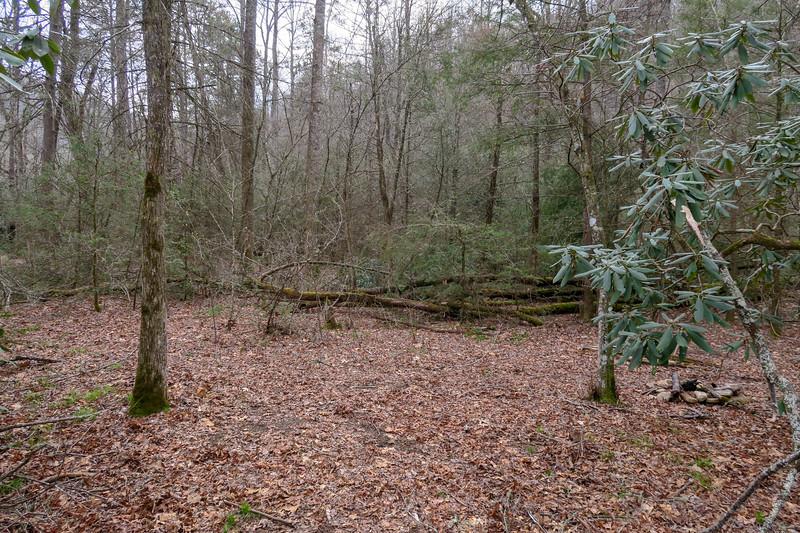 Vineyard Gap Trail -- 2,280'