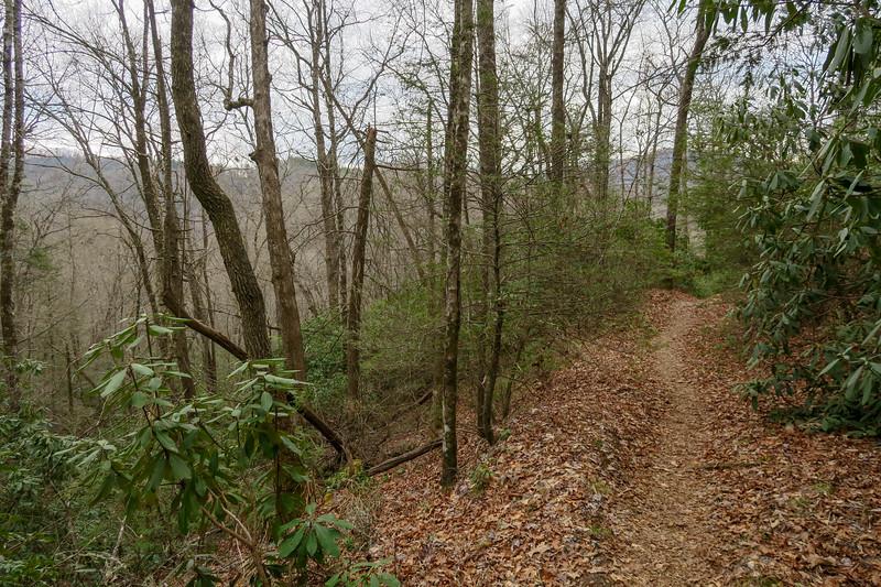 Bradley Creek Trail -- 2,550'