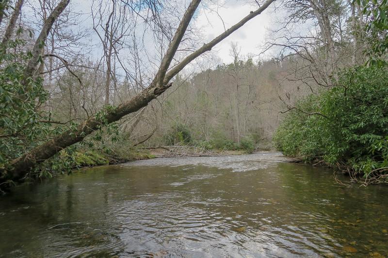 South Fork Mills River -- 2,280'