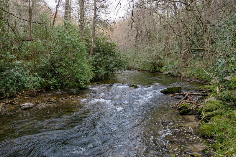 South Fork Mills River -- 2,390'