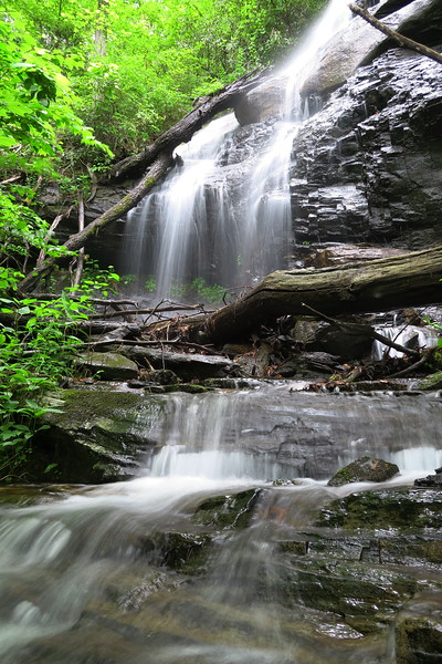 Logging Road Falls