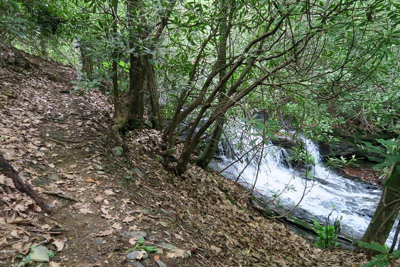 Upper Log Hollow Falls Path