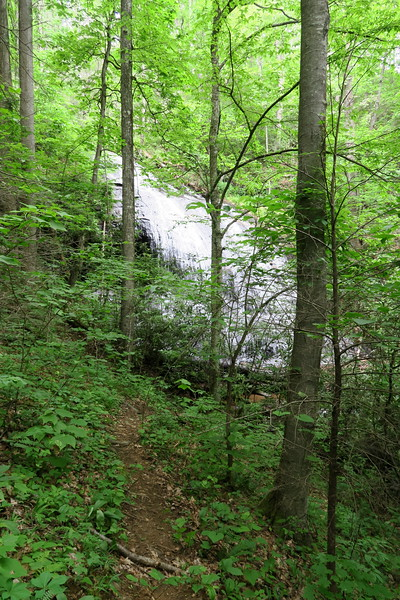 Upper Log Hollow Falls Path