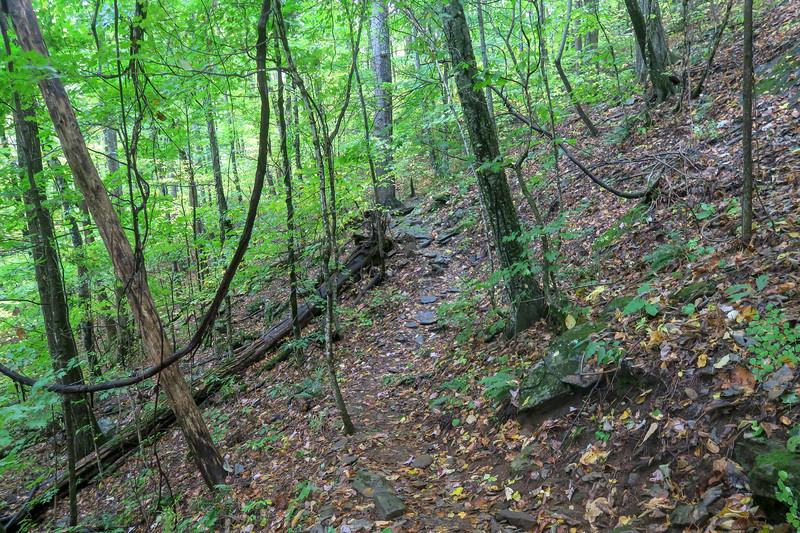 Art Loeb Trail -- 4,000'