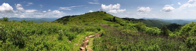 Art Loeb Trail @ Flower Gap -- 5,800'