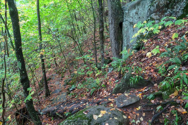 Art Loeb Trail -- 3,880'
