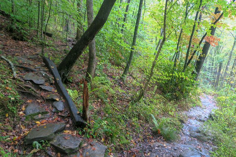 Art Loeb Trail -- 3,350'