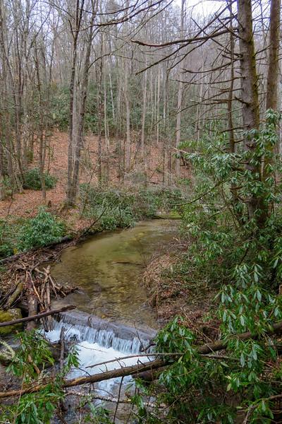 Avery Creek Trail -- 2,500'