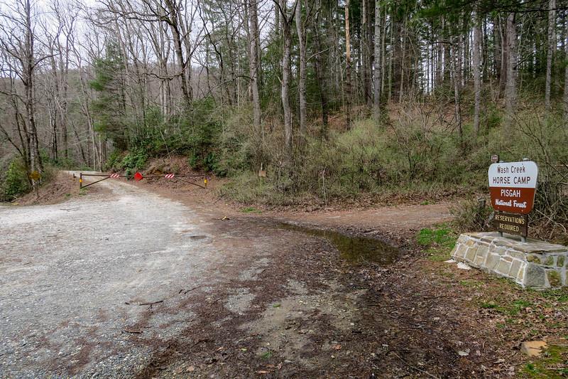 Bear Branch Trailhead @ Wash Creek Road -- 2,440'