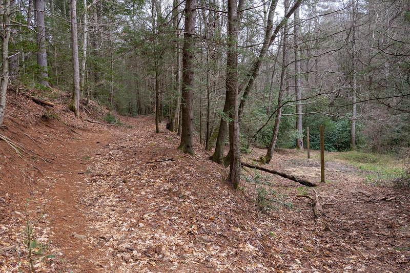 Bear Branch Trail -- 2,460'