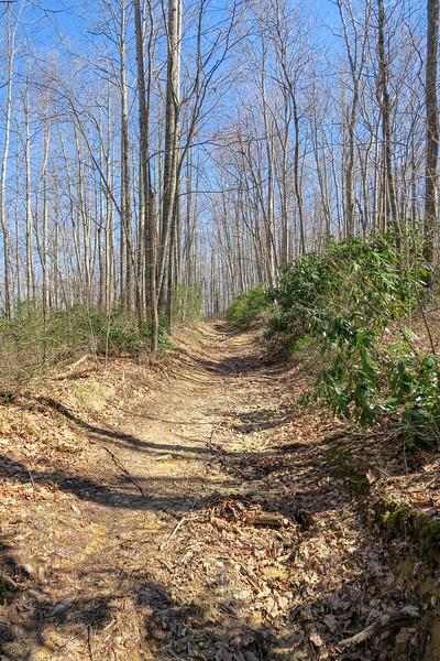Bennett Gap Trail -- 3,520'