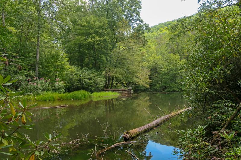 Hendersonville Reservoir -- 2,450'