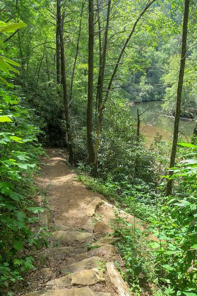 Big Creek Trail -- 2,460'