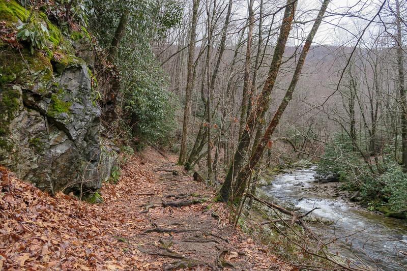 Big East Fork Trail -- 3,390'
