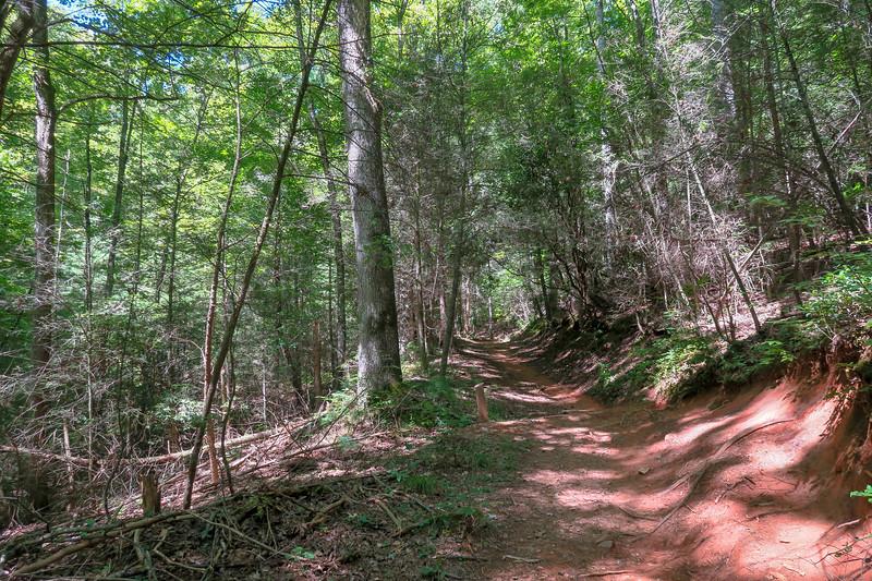 Black Mountain Trail -- 2,850'