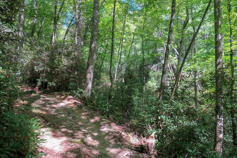 Black Mountain Trail -- 2,600'