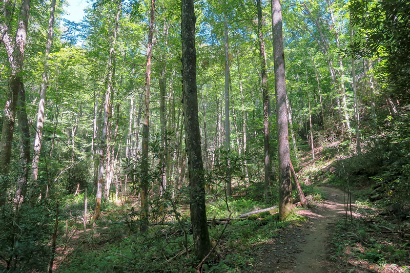Black Mountain Trail -- 2,270'
