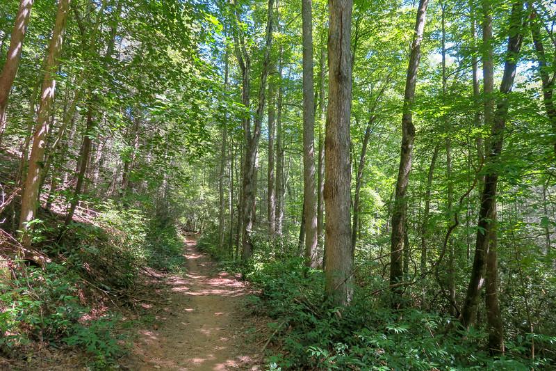 Black Mountain Trail -- 2,700'