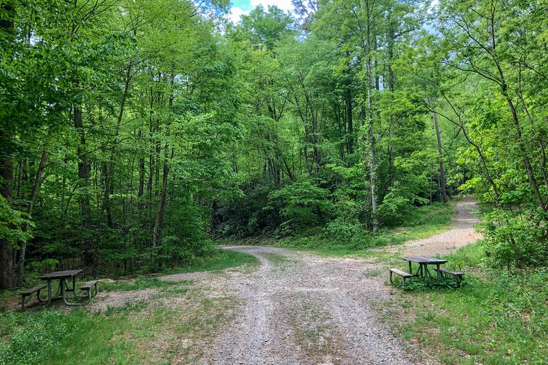 Boyd Branch Trail/F.R. 479F Junction -- 2,380'