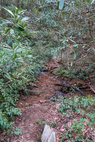 Bradley Creek Trail -- 2,640'