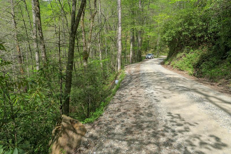 Bradley Creek Trailhead @ Yellow Gap Road (F.R. 1206) -- 2,750'