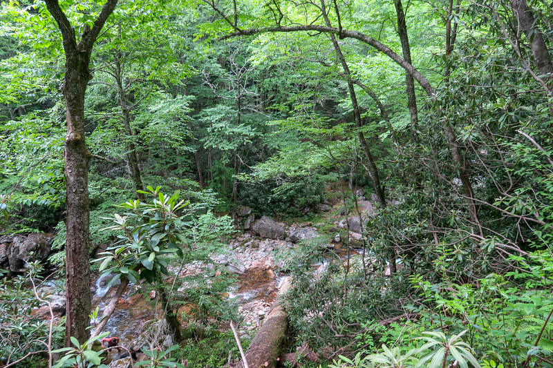 Bridges Camp Gap Trail -- 4,000'