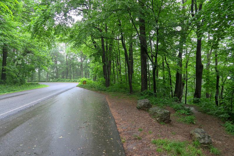 Buck Spring Trailhead @ US-276 -- 3,700'