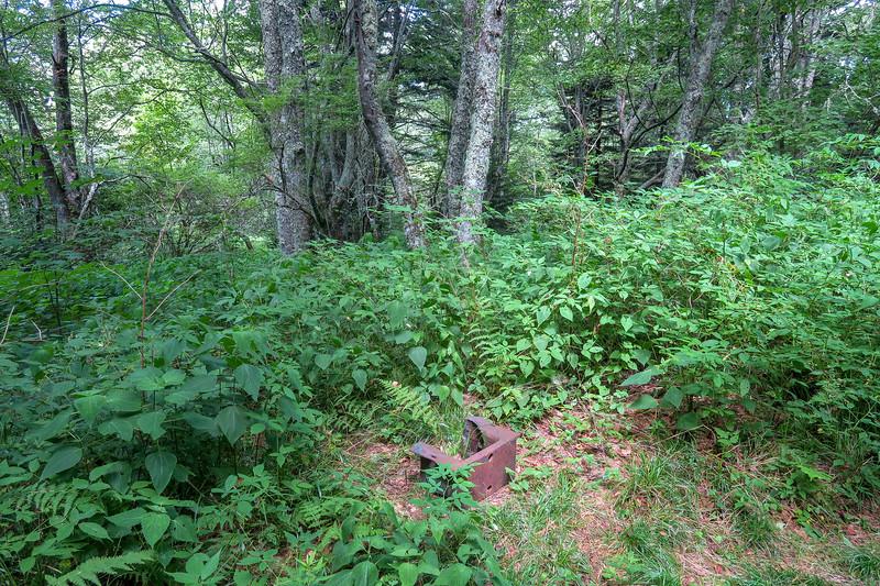 Buckeye Gap Trail -- 5,420'