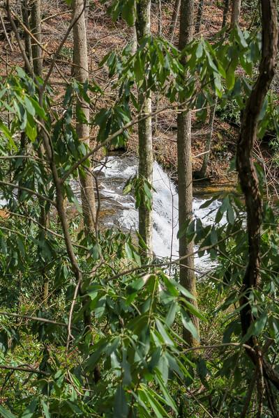 Buckhorn Gap Trail (Avery Creek Falls) -- 2,560'