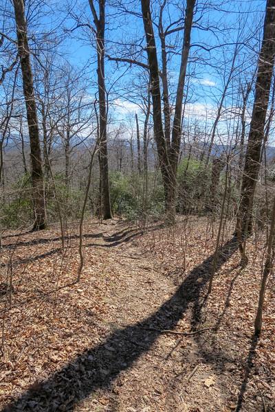 Buckwheat Knob Trail -- 3,920'