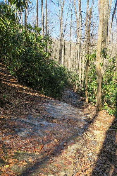 Butter Gap Trail -- 3,080'