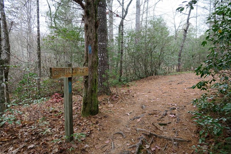 Butter Gap Trail -- 2,590'