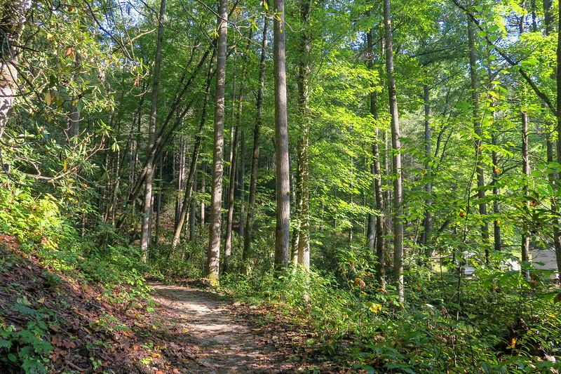 Caney Bottom Trail -- 2,660'