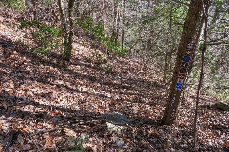 Case Camp Ridge Trail -- 4,370'