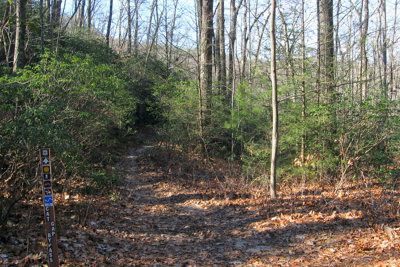 Cat Gap Bypass/Cat Gap Loop/John Rock Trail Junction -- 3,100'
