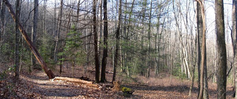 Cat Gap Bypass Trail -- 3,080'