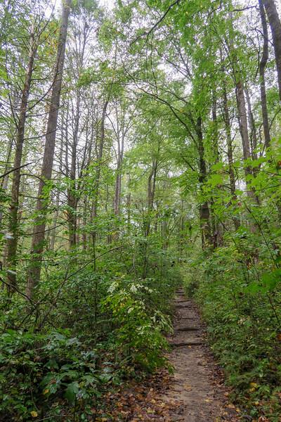 Cat Gap Loop Trail -- 2,330'