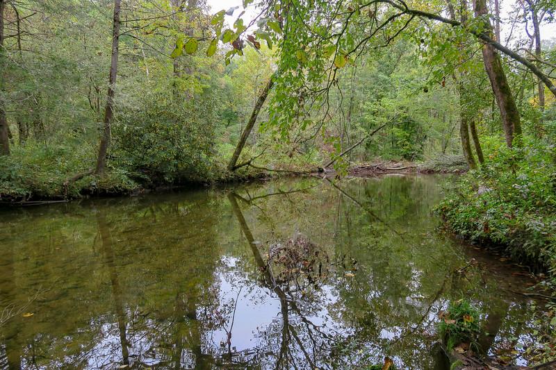 Davidson River -- 2,340'