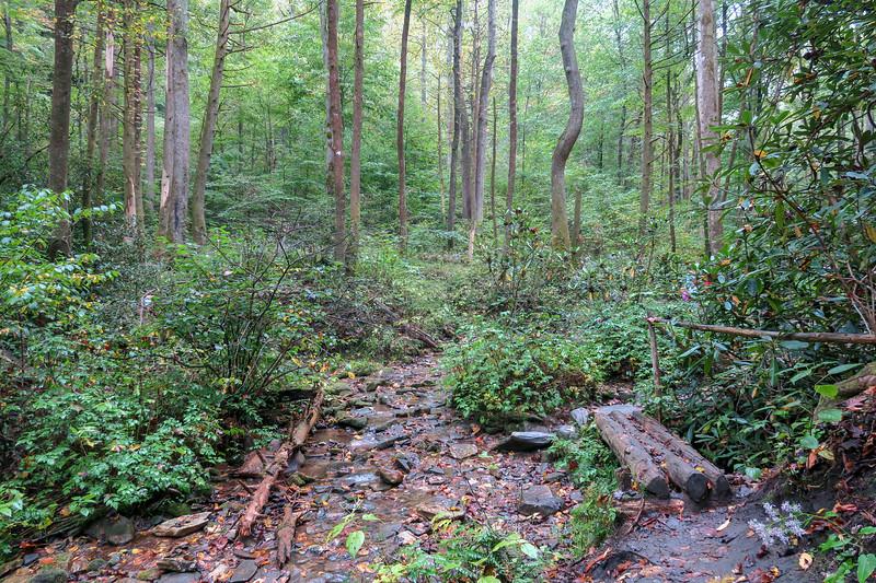 Cat Gap Loop Trail -- 2,400'