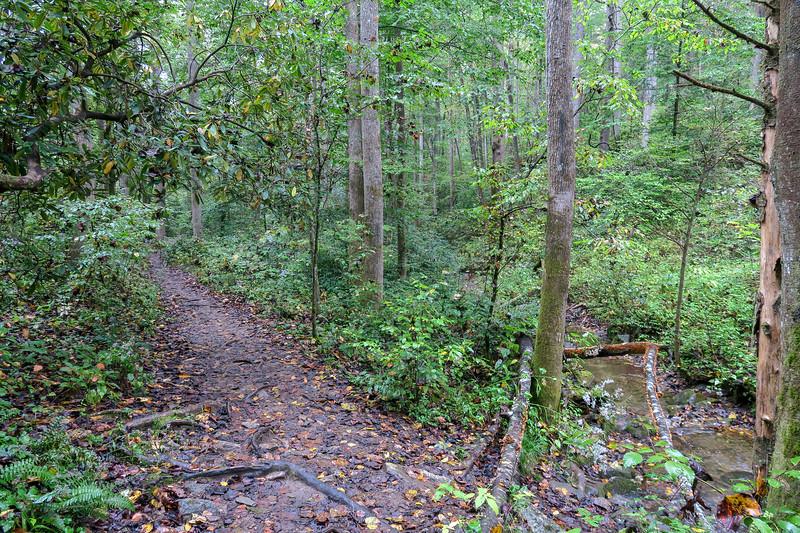 Cat Gap Loop Trail -- 2,370'