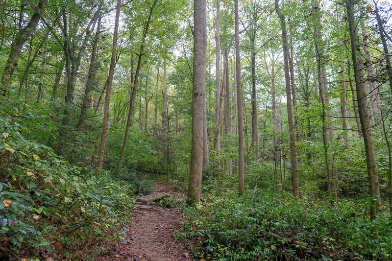 Cat Gap Loop Trail -- 2,500'