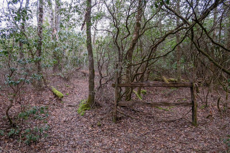 Cemetery Loop Trail -- 2,970'