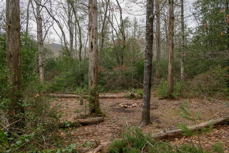 Cemetery Loop Trail -- 2,960'