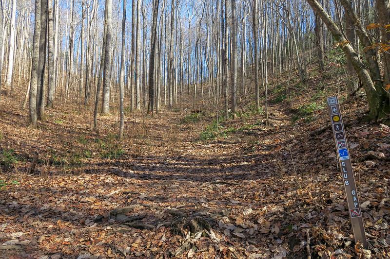 Club Gap Trailhead (F.R 477) -- 3,400'