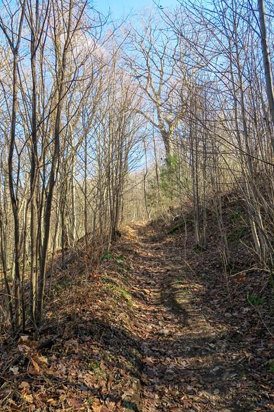 Club Gap Trail -- 3,750'