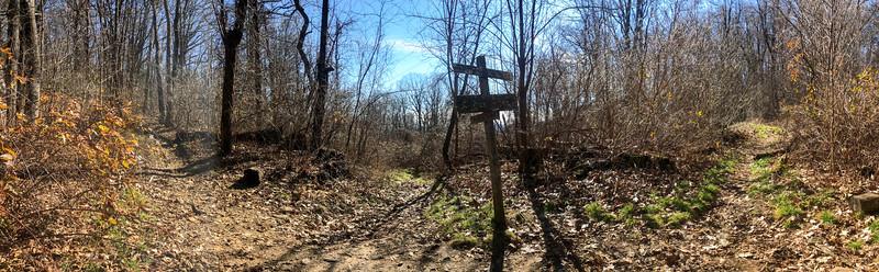 Club Gap (Club Gap/Avery Creek/Black Mountain/Buckwheat Knob Trails) -- 3,780'