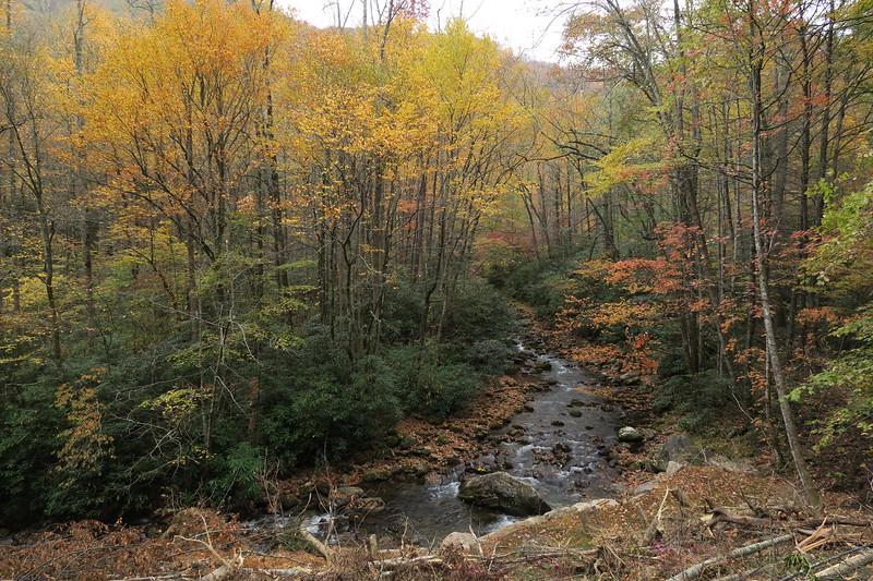 Daniel Ridge Loop Trail -- 2,710'